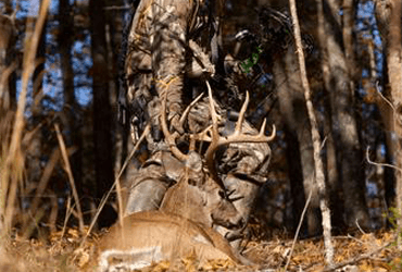 20 Tips To Make You A Better Deer Hunter